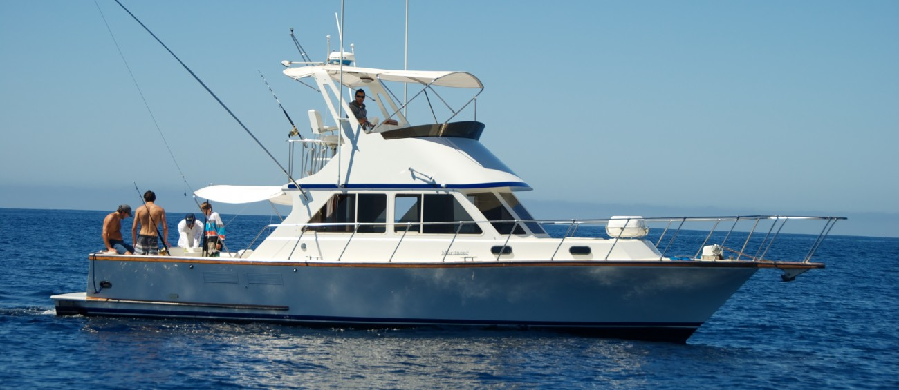 Catchfishcabo san jose del cabo fishing charters for Los cabos fishing charters