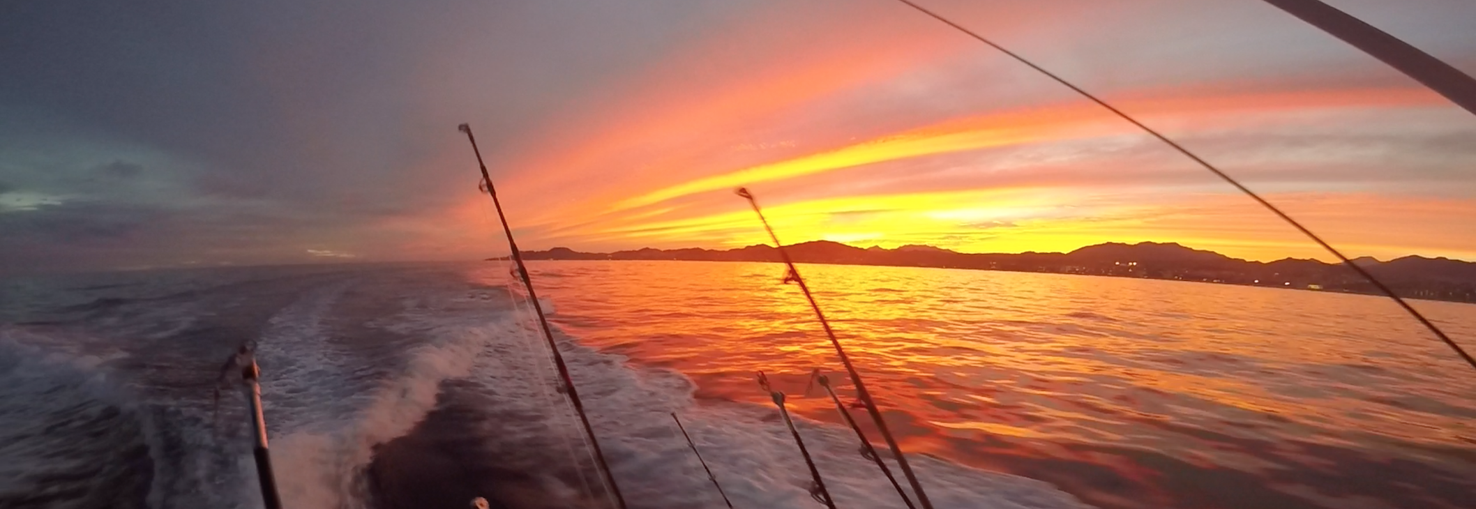 Where to fish from in los cabos catch fish cabo for Los cabos fishing